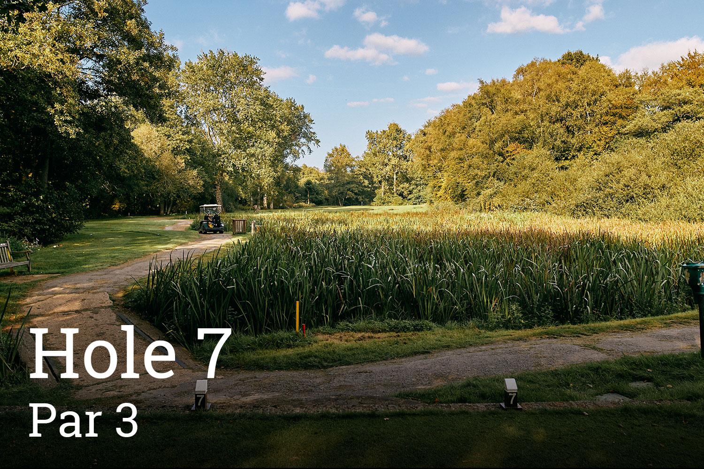 Horam Park Golf Club Hole 7